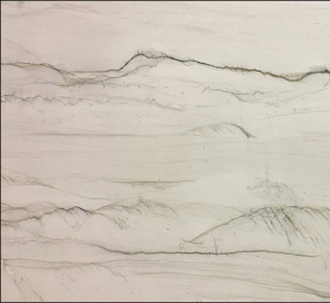 Mont Blanc quartzite from Brazil has a white background accented with veins of dark to medium gray.