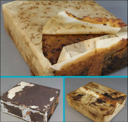 The 106-year-old fruitcake qualifies as a historical artifact left behind by explorers in Cape Adare, Antarctica.
